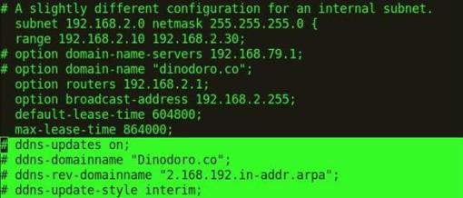 Activacion de las actualizaciones DNS